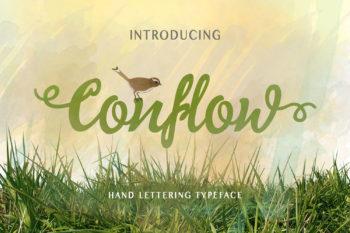 Conflow Typeface Font