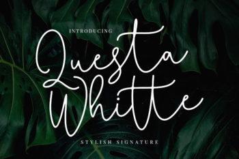 Free Questa Whitte Signature Font
