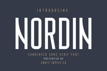 Nordin Sans Serif Free Demo