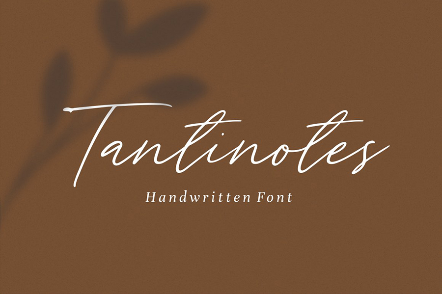 Tantinotes Handwriting Script