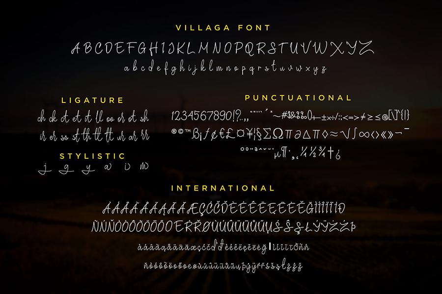 Villaga Stylish Signature Font