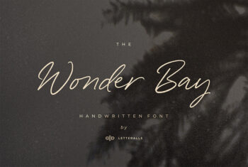 Wonder Bay Script Demo