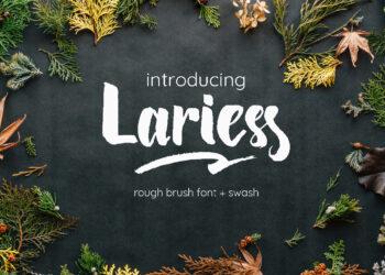Lariess Font Free Font