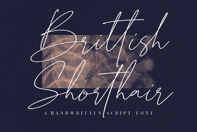 Brittish Sorthair Free Font